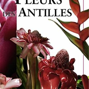 Fleur des Antilles